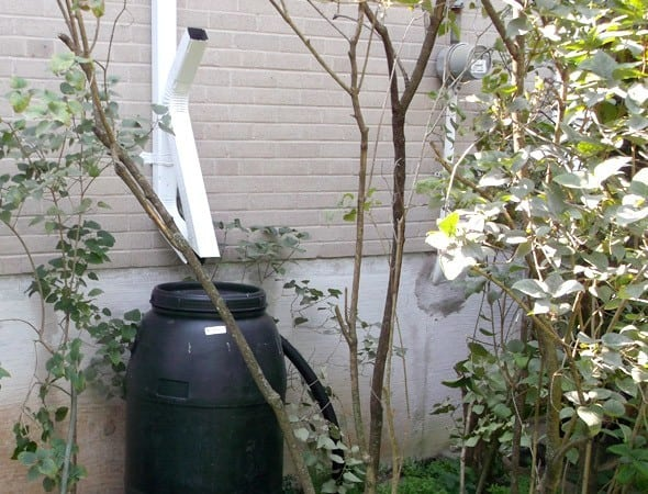 Zip HInge Rain Barrel